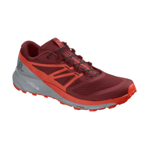 Salomon Sense Ride 2 Homme Dahli